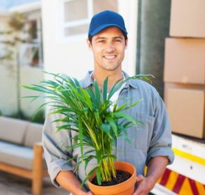 Mover carrying plant - part of various moving services offered